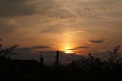 solar_pillar_with_birds_20090630_1764490801